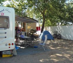 Camping Le Rochelongue: P7120099